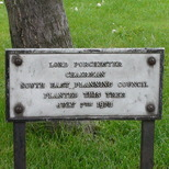 Lord Porchester tree